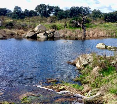 Lago de la dehesa